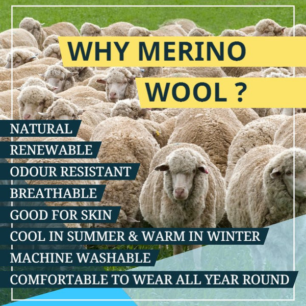 Why Neemans Merino Wool Shoes