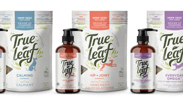 True Leaf Unveils New Brand Identity  and Product Innovations