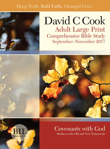 Bible-in-Life - Adult Large Print Student Book - Fall 2017