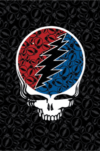 Grateful Dead Steal Your Face Tapestry 52x80