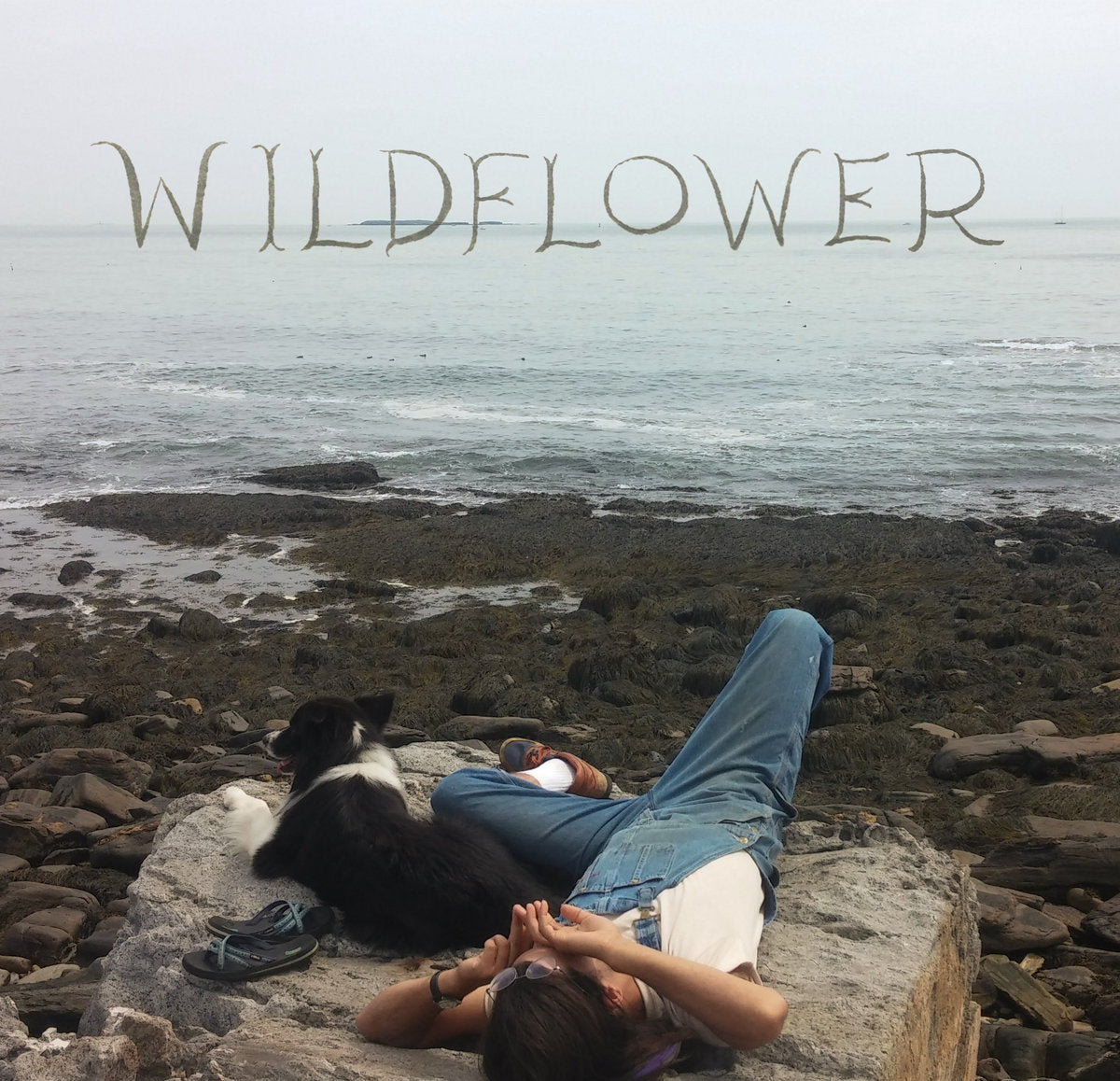 Wildflower - Part One
