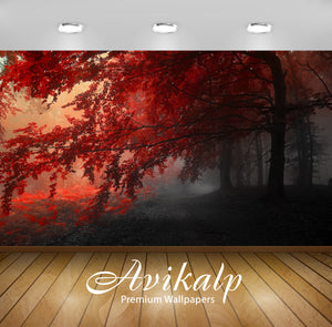 Avikalp Exclusive Autumn Beauty AWI1076 HD Wallpapers for Living room, Hall, Kids Room, Kitchen, TV