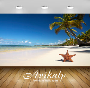 Avikalp Exclusive Beach Star Fish AWI1078 HD Wallpapers for Living room, Hall, Kids Room, Kitchen, T