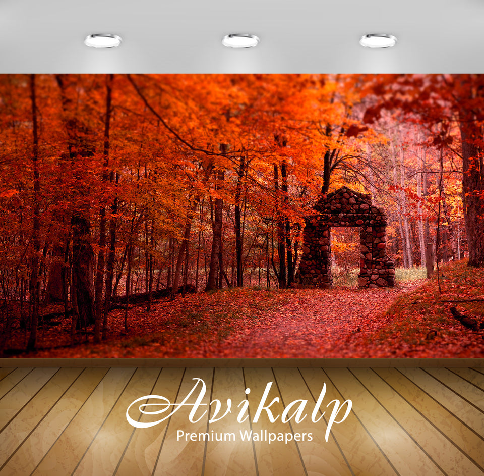 Avikalp Exclusive Beautiful Autumn AWI1081 HD Wallpapers for Living room, Hall, Kids Room, Kitchen,