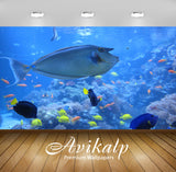 Avikalp Exclusive Nose Doctor Fish AWI1169 HD Wallpapers for Living room, Hall, Kids Room, Kitchen,