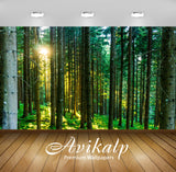 Avikalp Exclusive Premium forest HD Wallpapers for Living room, Hall, Kids Room, Kitchen, TV Backgro