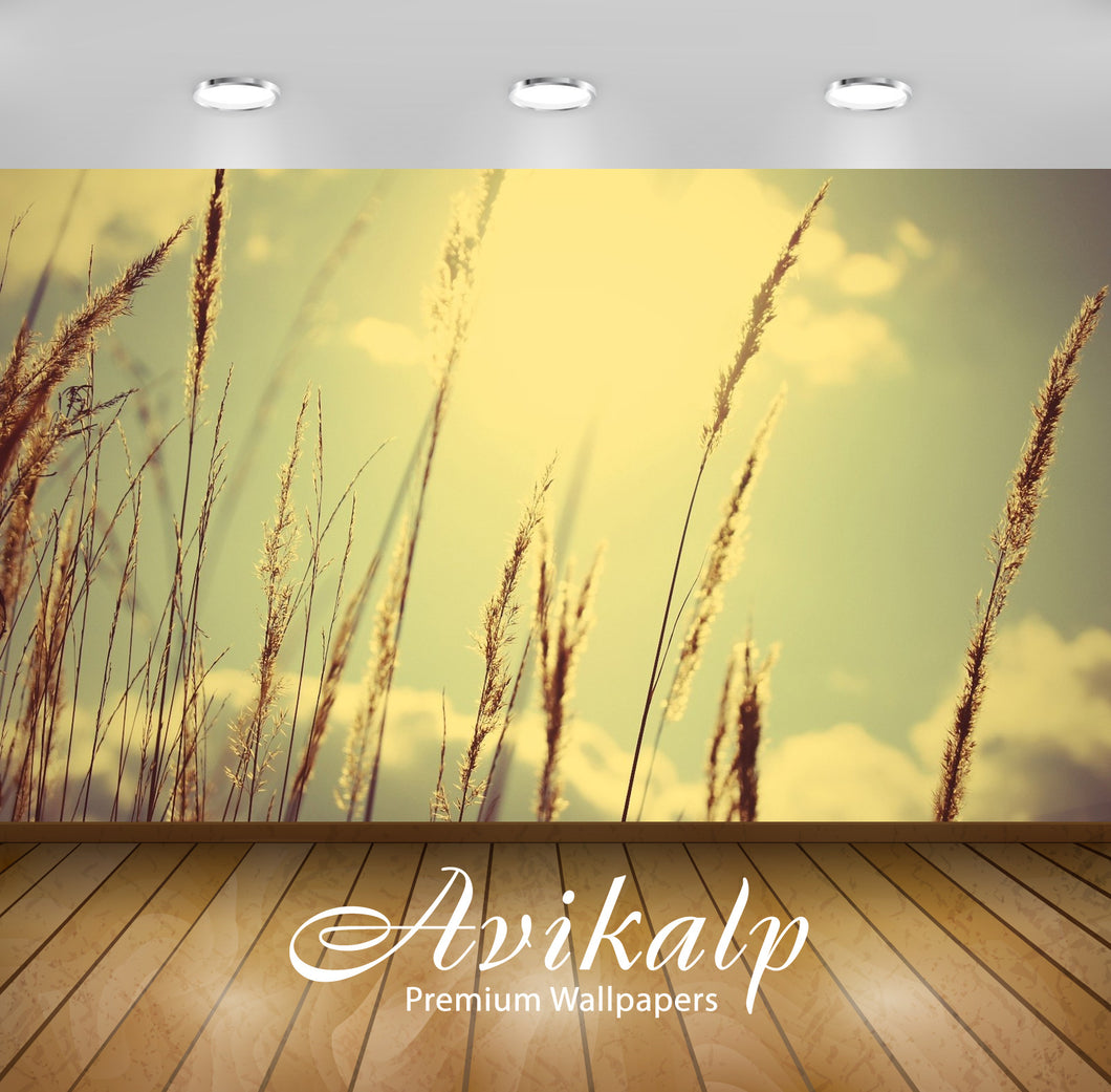 Avikalp Exclusive Awi1291 Crops Full HD Wallpapers for Living room, Hall, Kids Room, Kitchen, TV Bac