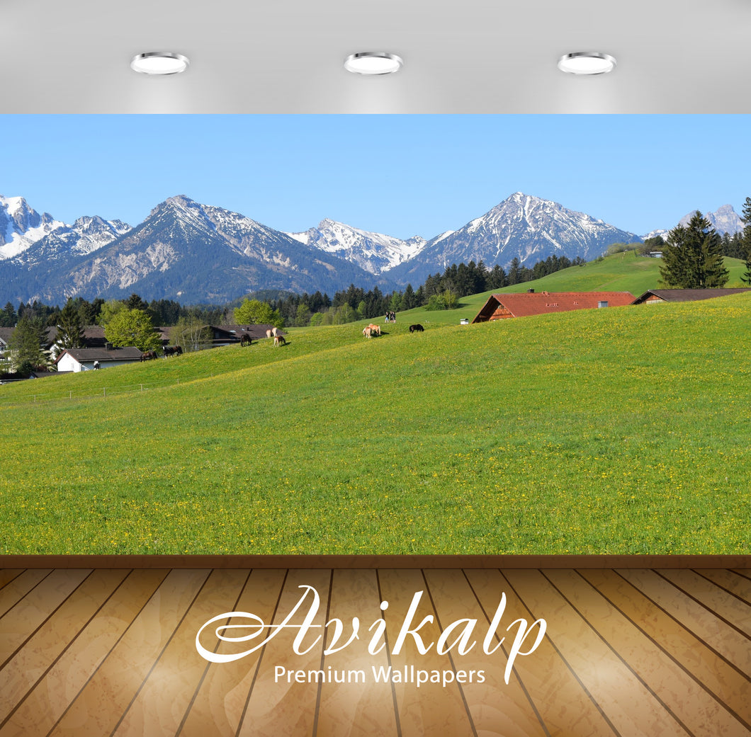 Avikalp Exclusive Premium germany HD Wallpapers for Living room, Hall, Kids Room, Kitchen, TV Backgr
