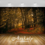 Avikalp Exclusive Awi1437 Frost Woods Autumn Full HD Wallpapers for Living room, Hall, Kids Room, Ki