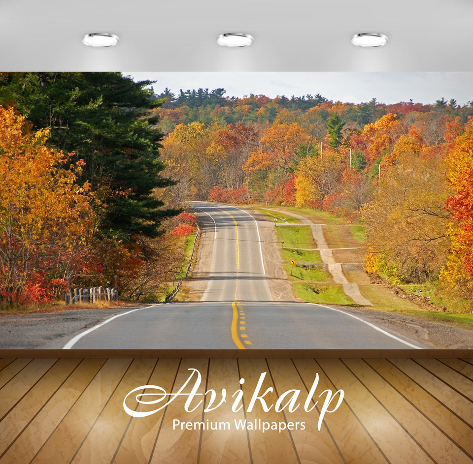 Avikalp Exclusive Awi1464 Beauty Of Roads Autumn Full HD Wallpapers for Living room, Hall, Kids Room
