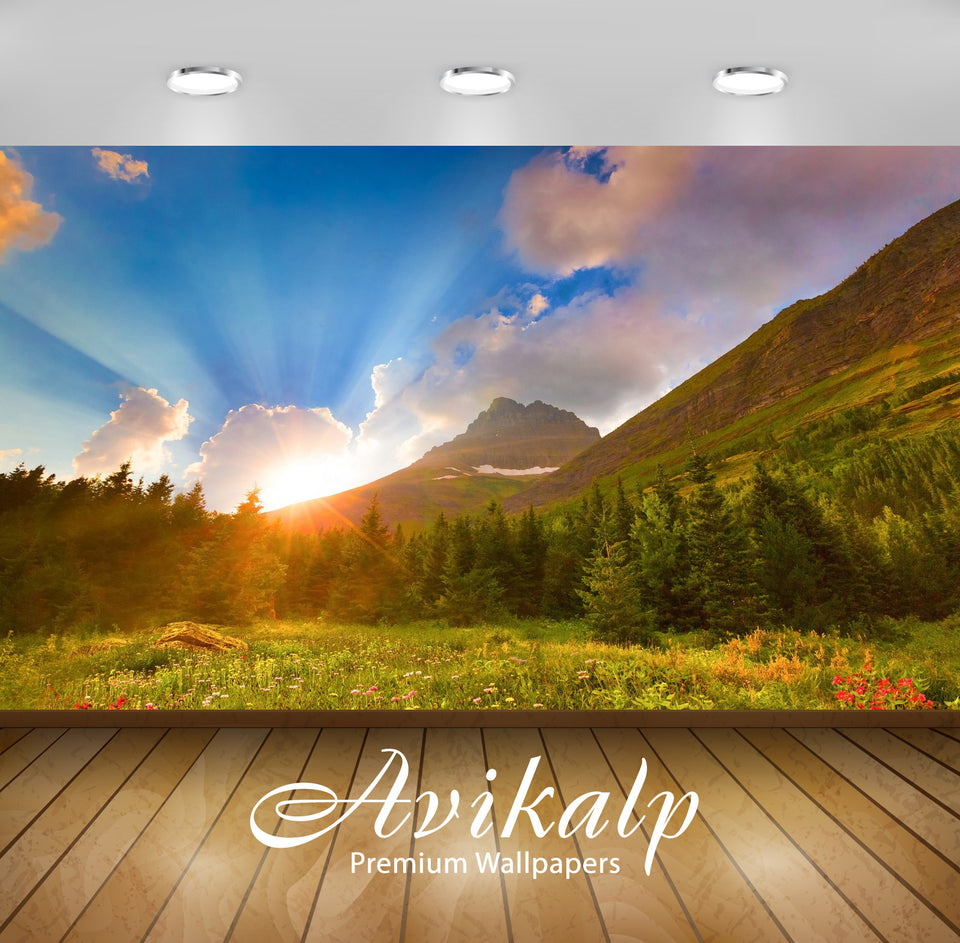 Avikalp Exclusive Awi1517 Beautiful Sunrise Nature Full HD Wallpapers for Living room, Hall, Kids Ro
