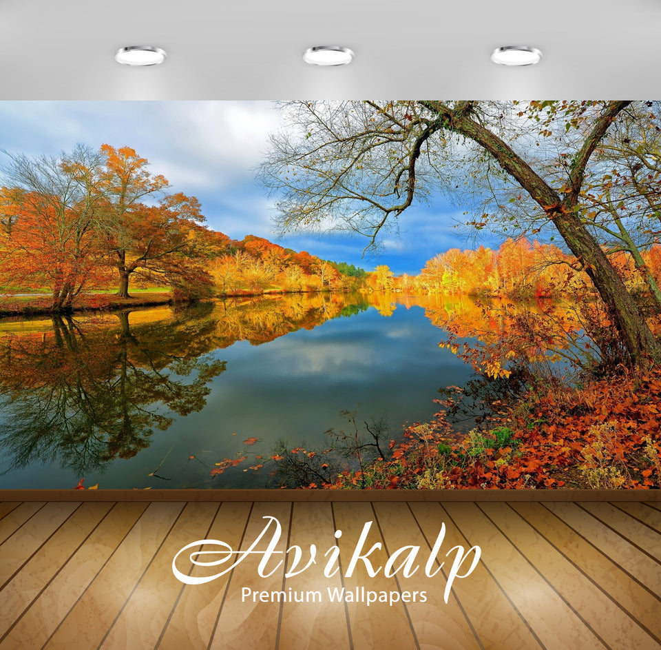 Avikalp Exclusive Awi1528 Beautiful Autumn View Full HD Wallpapers for Living room, Hall, Kids Room,