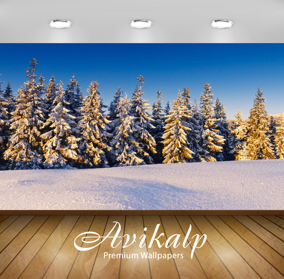Avikalp Exclusive Awi1569 Beautiful Snowy Trees Full HD Wallpapers for Living room, Hall, Kids Room,