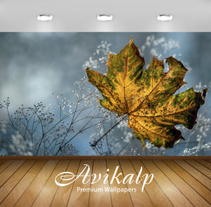 Avikalp Exclusive Awi1576 Beautiful Leaf Full HD Wallpapers for Living room, Hall, Kids Room, Kitche