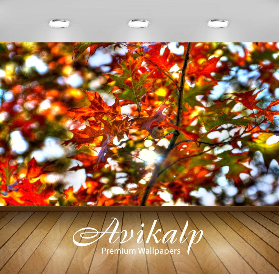 Avikalp Exclusive Awi1579 Beautiful Leaves Full HD Wallpapers for Living room, Hall, Kids Room, Kitc
