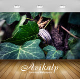 Avikalp Exclusive Premium ivy HD Wallpapers for Living room, Hall, Kids Room, Kitchen, TV Background
