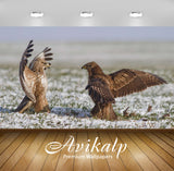 Avikalp Exclusive Awi1711 Birds Full HD Wallpapers for Living room, Hall, Kids Room, Kitchen, TV Bac