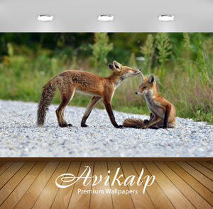 Avikalp Exclusive Awi1794 Fox Full HD Wallpapers for Living room, Hall, Kids Room, Kitchen, TV Backg