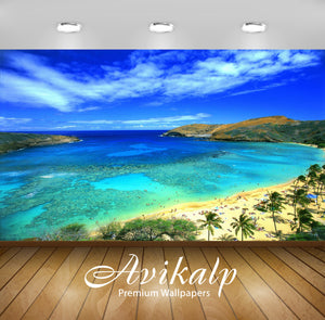 Avikalp Exclusive Awi1914 Hawaii Beach Full HD Wallpapers for Living room, Hall, Kids Room, Kitchen,
