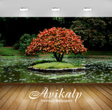 Avikalp Exclusive Awi1924 Red Tree In The Lake Full HD Wallpapers for Living room, Hall, Kids Room,