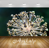 Avikalp Exclusive Premium leek HD Wallpapers for Living room, Hall, Kids Room, Kitchen, TV Backgroun