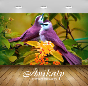 Avikalp Exclusive Awi1949 Beautiful Birds Full HD Wallpapers for Living room, Hall, Kids Room, Kitch