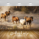 Avikalp Exclusive Awi1957 Running Horses Full HD Wallpapers for Living room, Hall, Kids Room, Kitche