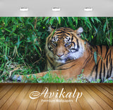 Avikalp Exclusive Awi2161 Tiger  Full HD Wallpapers for Living room, Hall, Kids Room, Kitchen, TV Ba