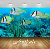 Avikalp Exclusive Awi2394 Atlantic Porkfish Anisotremus Virginicus Full HD Wallpapers for Living roo