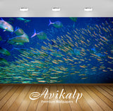 Avikalp Exclusive Awi2406 Background Ocean Fish Underwater World Full HD Wallpapers for Living room,