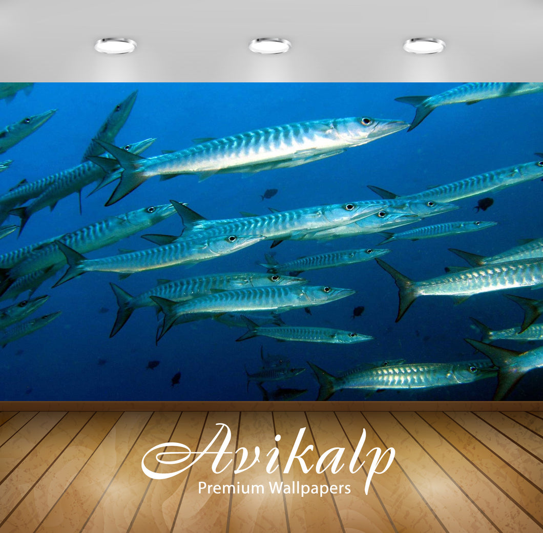 Avikalp Exclusive Awi2410 Baraccuda Raja Ampat 2 Full HD Wallpapers for Living room, Hall, Kids Room