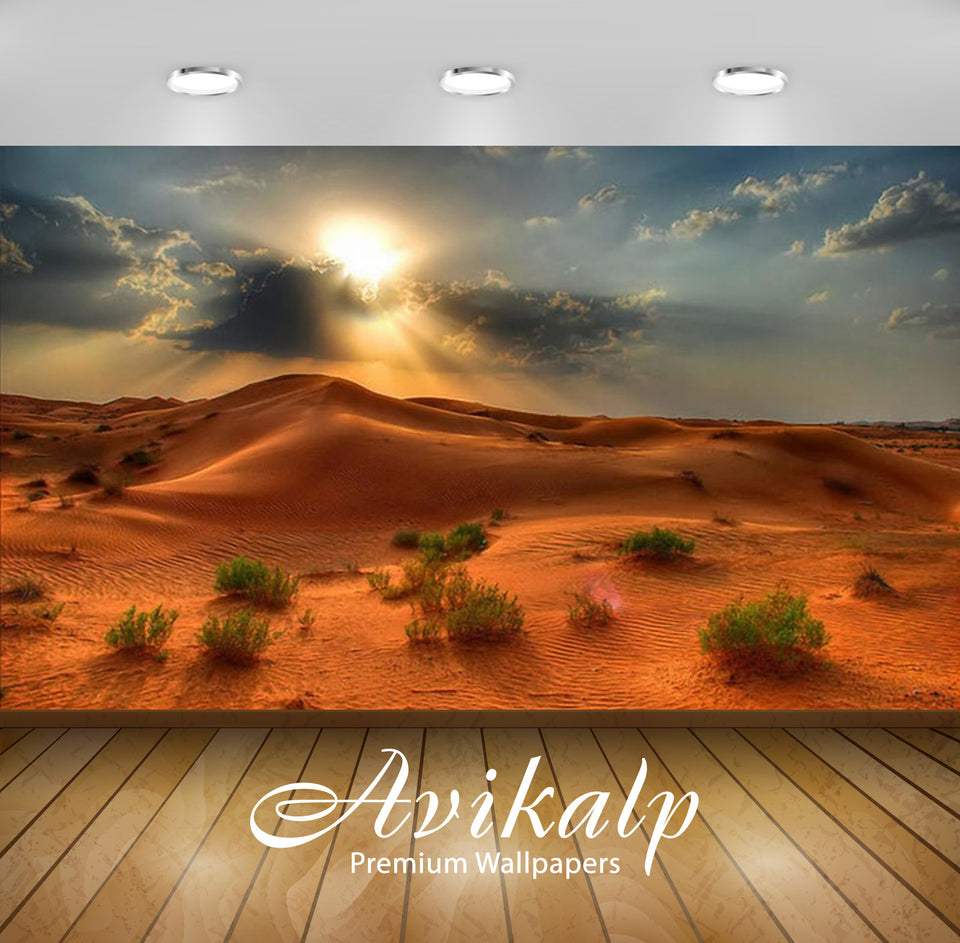Avikalp Exclusive Awi2550 Desert Landscape Summer Sunset In The Desert Red Sand Beautiful Picture Fu