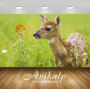Avikalp Exclusive Awi2616 Fawn Full HD Wallpapers for Living room, Hall, Kids Room, Kitchen, TV Back