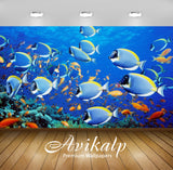 Avikalp Exclusive Awi2627 Fish Full HD Wallpapers for Living room, Hall, Kids Room, Kitchen, TV Back