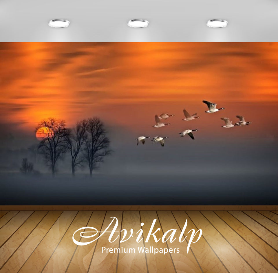 Avikalp Exclusive Awi2631 Flight Sunset Geese In Flight Fog Wood Red Sky Full HD Wallpapers for Livi