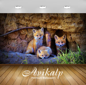 Avikalp Exclusive Awi2639 Fox Family Three Cubs Full HD Wallpapers for Living room, Hall, Kids Room,