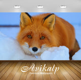 Avikalp Exclusive Awi2641 Fox Red Fur Co Winter Snow Full HD Wallpapers for Living room, Hall, Kids