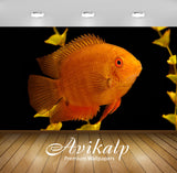Avikalp Exclusive Awi2674 Gold Severum Fish Full HD Wallpapers for Living room, Hall, Kids Room, Kit