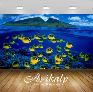 Avikalp Exclusive Awi2710 Hawaii Ocean Tropski Exotic Fish Full HD Wallpapers for Living room, Hall,