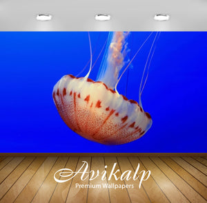 Avikalp Exclusive Awi2741 Jellyfish Full HD Wallpapers for Living room, Hall, Kids Room, Kitchen, TV