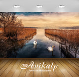 Avikalp Exclusive Awi2769 Lake Reeds Cane Swans Full HD Wallpapers for Living room, Hall, Kids Room,