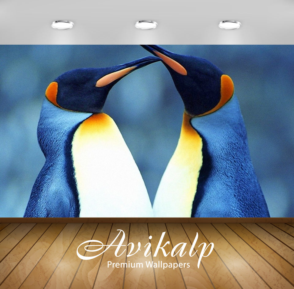 Avikalp Exclusive Awi2805 Love Between Two King Penguins Full HD Wallpapers for Living room, Hall, K