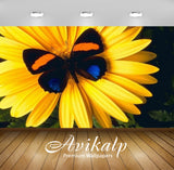 Avikalp Exclusive Awi2806 Lovely Yellow Flower With Colorful Butterfly Full HD Wallpapers for Living