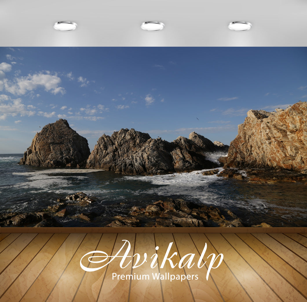 Avikalp Exclusive Premium sea HD Wallpapers for Living room, Hall, Kids Room, Kitchen, TV Background
