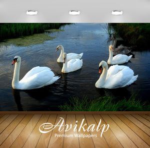 Avikalp Exclusive Awi3118 Swans Channel Water Full HD Wallpapers for Living room, Hall, Kids Room, K