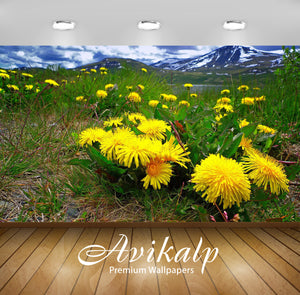 Avikalp Exclusive Awi5365 Dandelions In The Mountain Meadow Nature Full HD Wallpapers for Living roo
