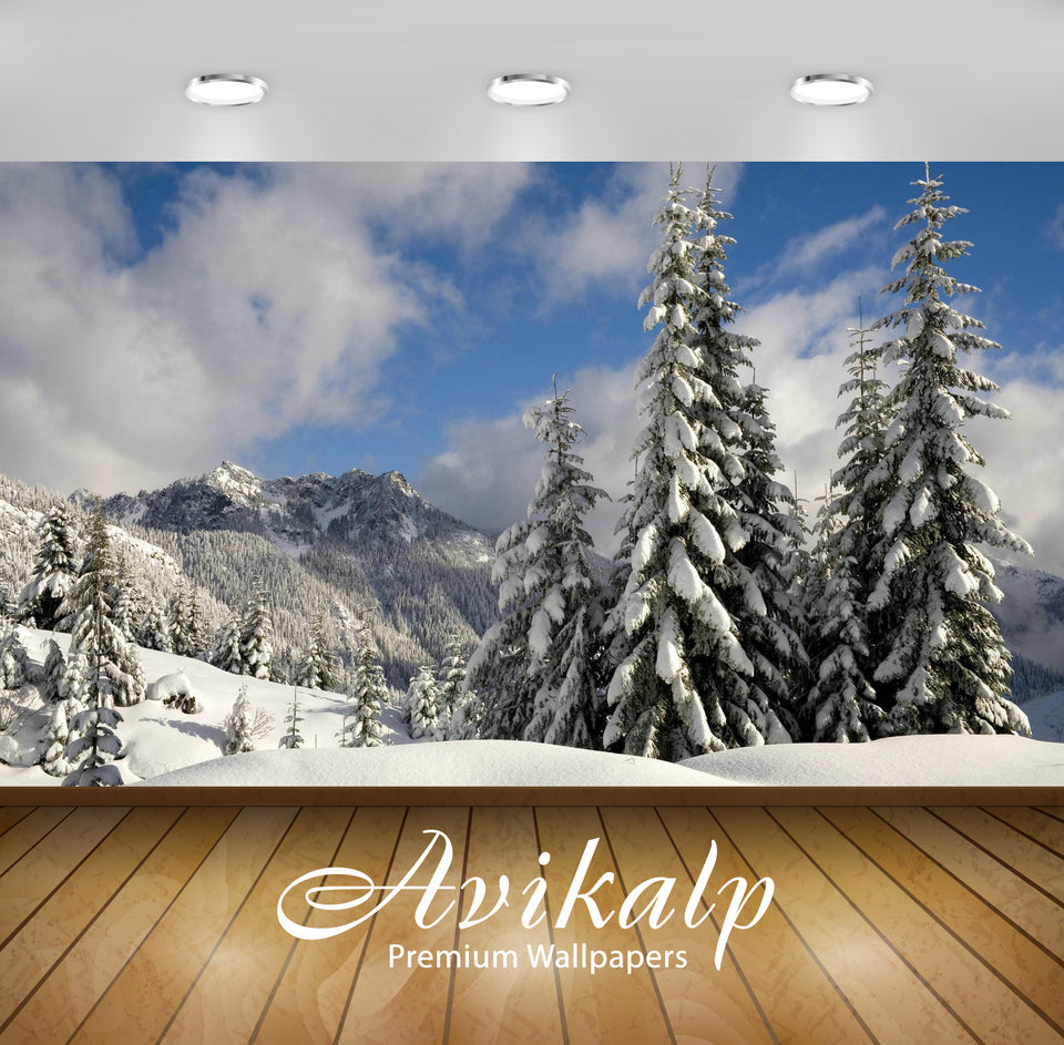Avikalp Exclusive Awi6258 Snowy Firs Nature Full HD Wallpapers for Living room, Hall, Kids Room, Kit