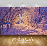 Avikalp Exclusive Awi6322 Snowy Tree Tunnel On The Path Through The Park Nature Full HD Wallpapers f