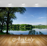 Avikalp Exclusive Awi6383 Summer Forest By The Lake Nature Full HD Wallpapers for Living room, Hall,