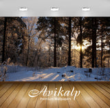 Avikalp Exclusive Awi6390 Sun Hiding From The Snow Behind The Trees Nature Full HD Wallpapers for Li